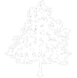 Café De Lindenboom Logo